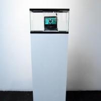 Suspension Video on Pedestal