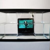 Suspension Aquarium Tank